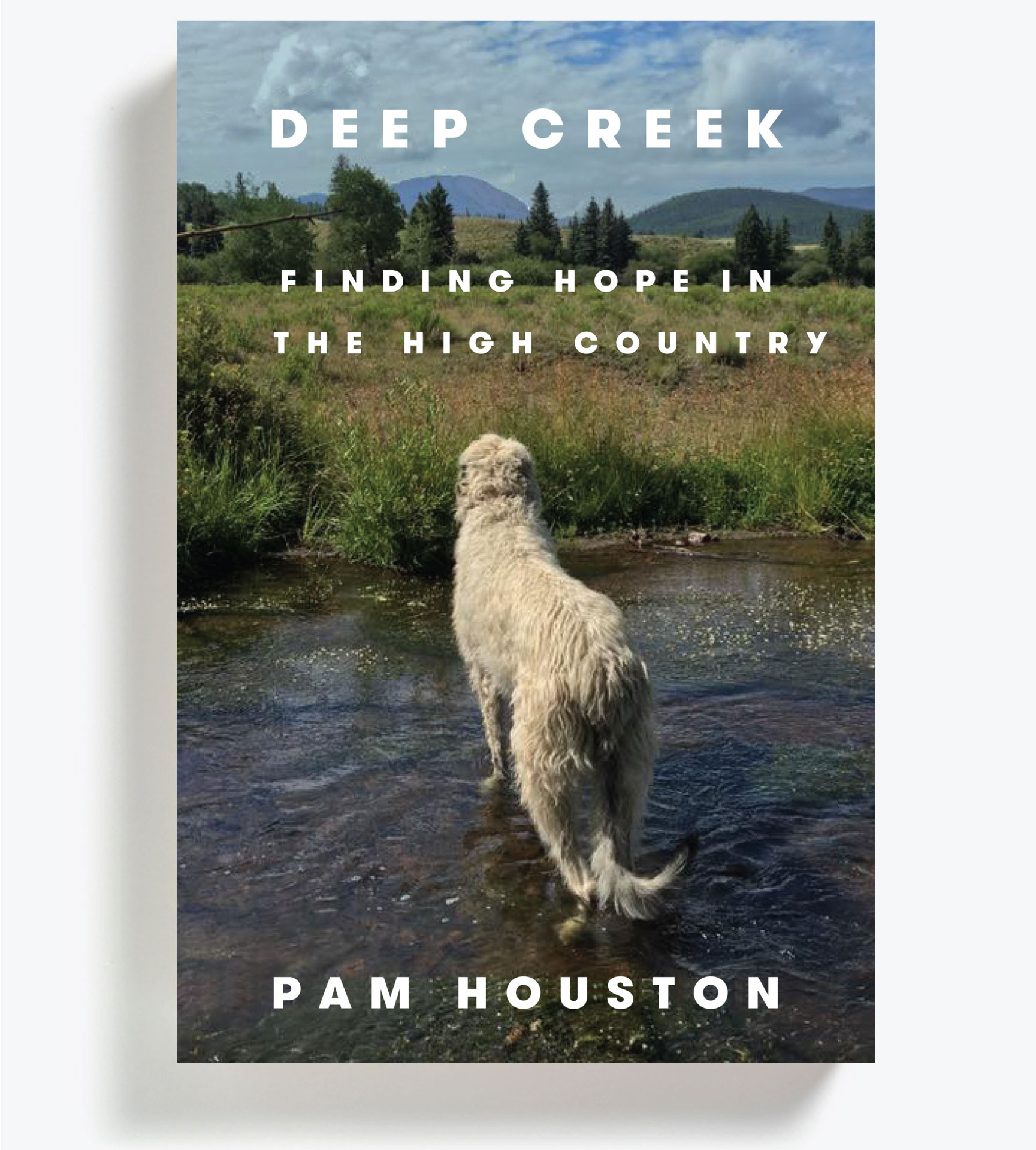 Cover of Pam Houston's book.